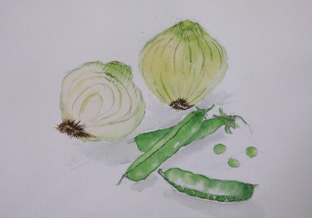 野菜を描く