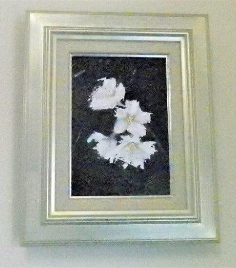 桜を油彩で 描く